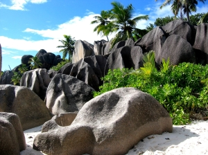 seychelles_holiday_palm_trees
