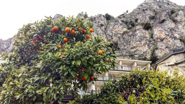www.tripelonia.com - Limone sul Garda April 2016 (109)