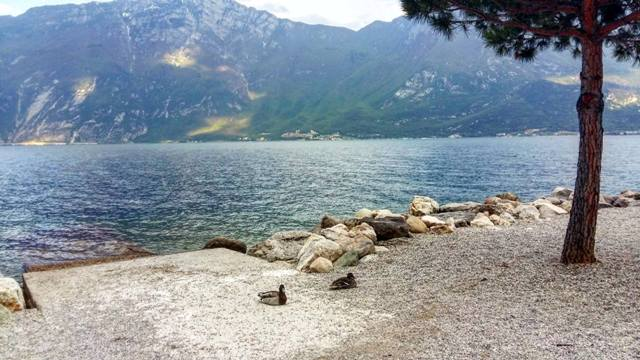 www.tripelonia.com - Limone sul Garda April 2016 (151)