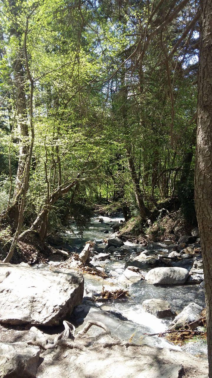 www.tripelonia.com - Arpenaz Waterfall (10)