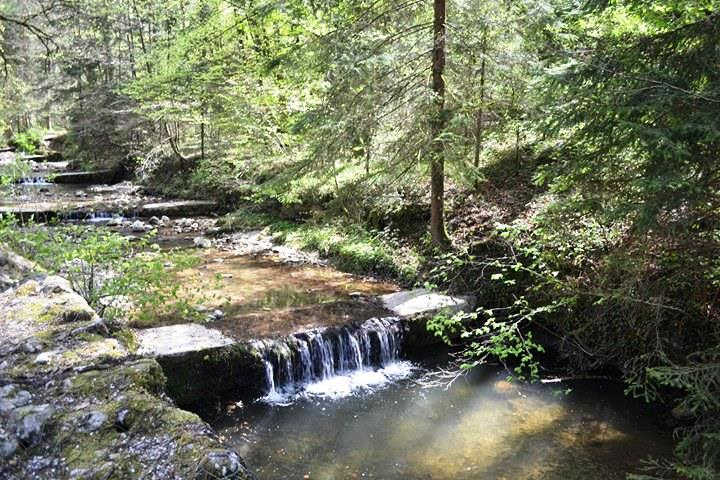 www.tripelonia.com - La Bénite Fontaine Sanctuary (2)