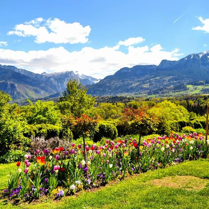 www.tripelonia.com - Spring blossoms (6)