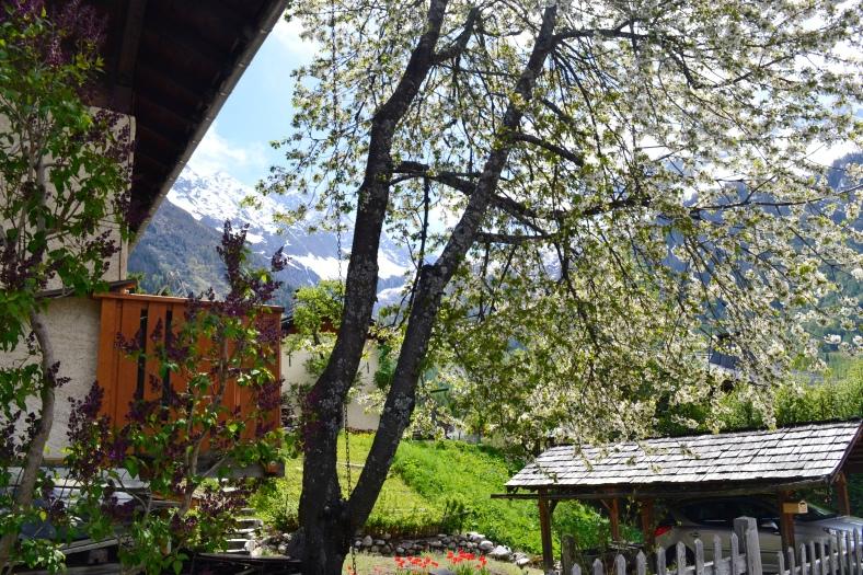 www.tripelonia.com - Argentiere beautiful spring (14)
