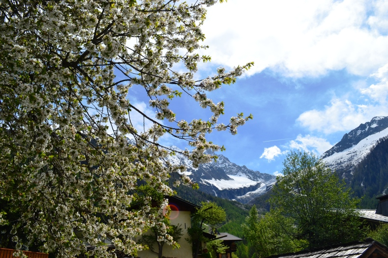 www.tripelonia.com - Argentiere beautiful spring (15)
