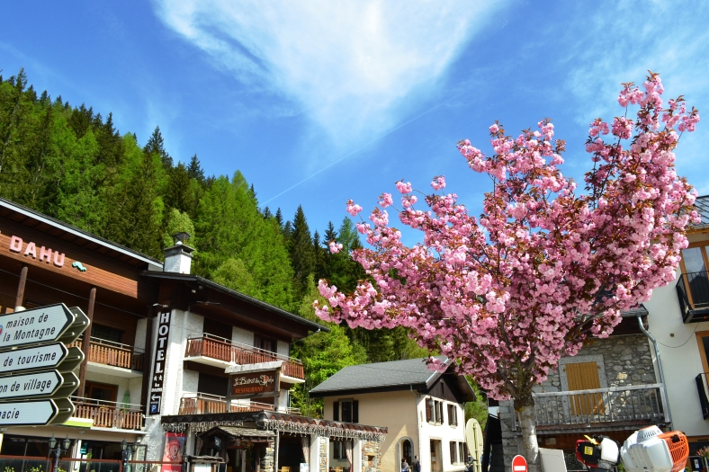 www.tripelonia.com - Argentiere beautiful spring (9)