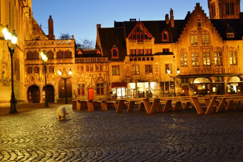 www.tripelonia.com - Bruges by night (19)