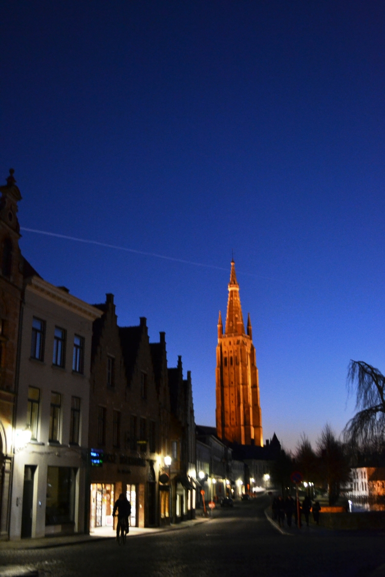 www.tripelonia.com - Bruges by night (2)