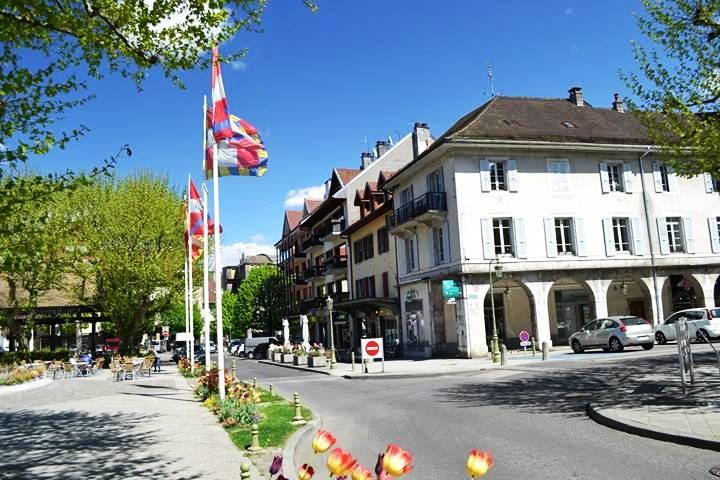 www.tripelonia.com - La Roche sur Foron 2017 (4)