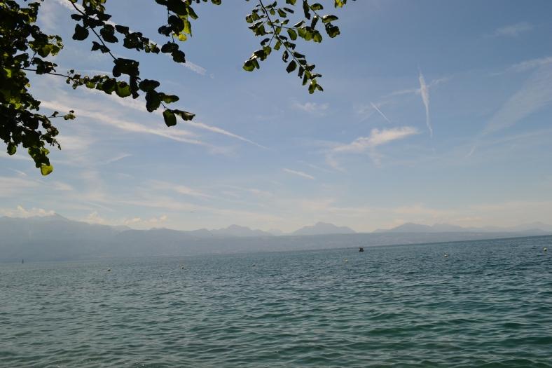 www.tripelonia.com - Lausanne summer (7)
