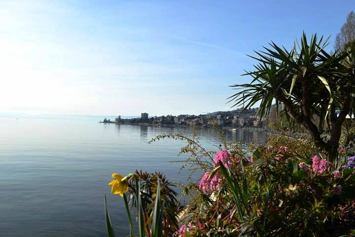 www.tripelonia.com - Montreux Riviera 2017 (12)