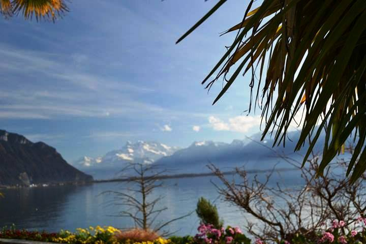 www.tripelonia.com - Montreux Riviera 2017 (15)