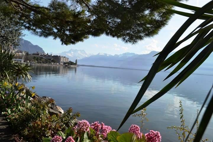 www.tripelonia.com - Montreux Riviera 2017 (16)