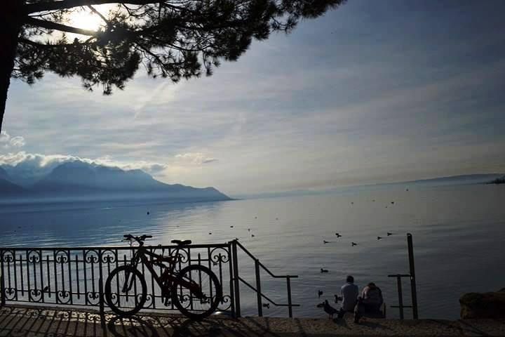 www.tripelonia.com - Montreux Riviera 2017 (17)