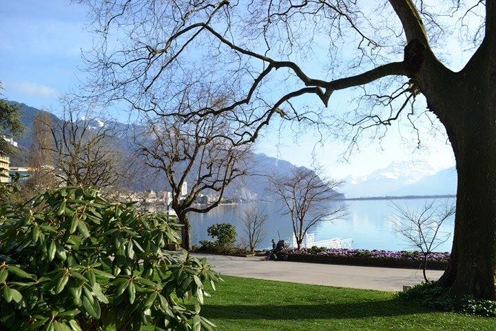 www.tripelonia.com - Montreux Riviera 2017 (2)