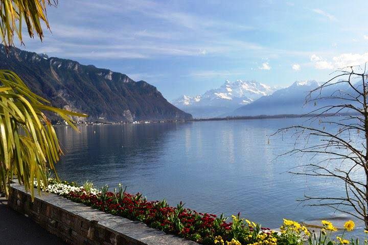 www.tripelonia.com - Montreux Riviera 2017 (21)