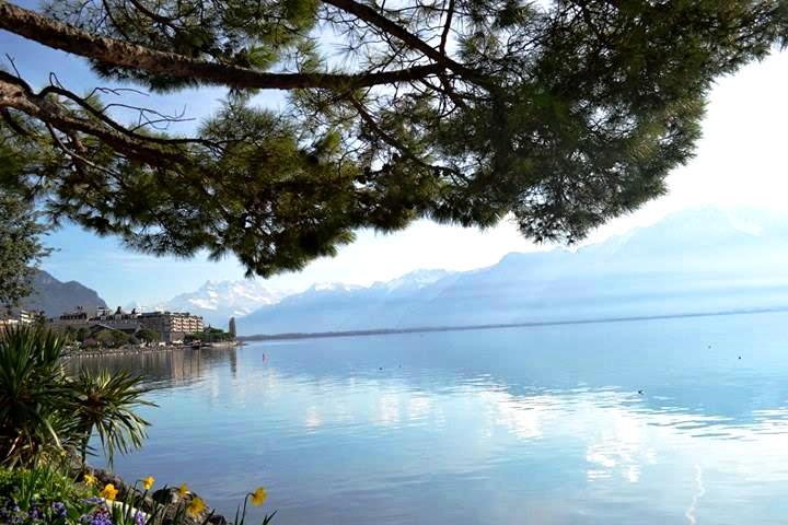 www.tripelonia.com - Montreux Riviera 2017 (3)