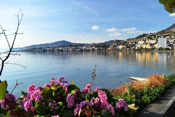 www.tripelonia.com - Montreux Riviera 2017 (5)