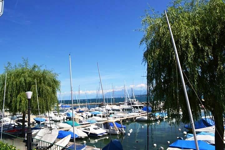 www.tripelonia.com - Nyon Switzerland (6)