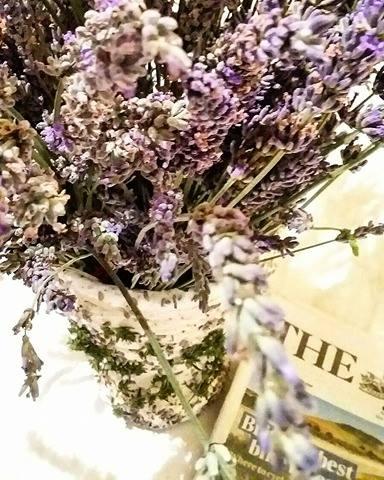 www.tripelonia.com - lavender scents (6)