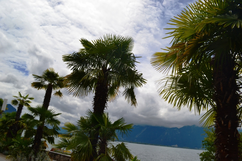 www.tripelonia.com - Montreux Jazz 2017 (36)