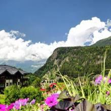 www.tripelonia.com - mountains (1)